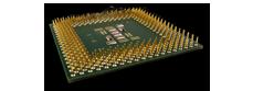 procesorius